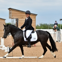 Saracen Horse Feeds British Dressage Team Quest
