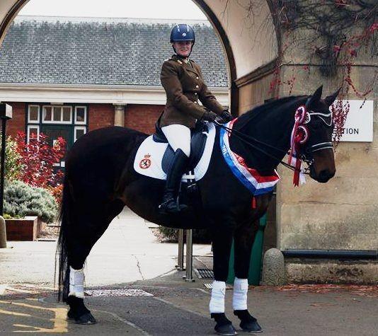 Rider of the Week - Susan Williams