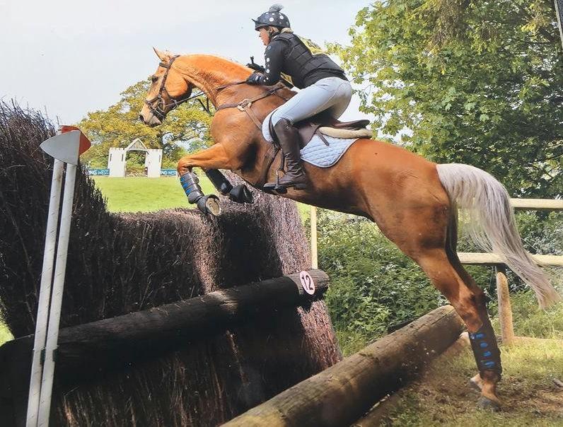 Rockingham Horse Trials BRC Team Show Jumping & Arena Eventing