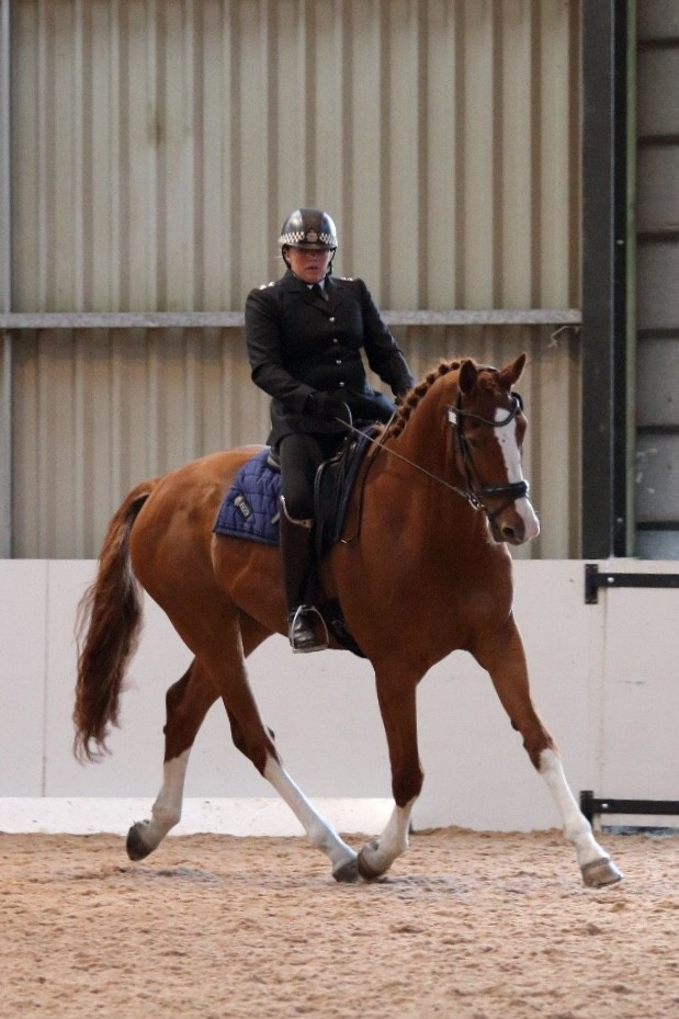 Police inspector to compete in national championship atop a dancing horse