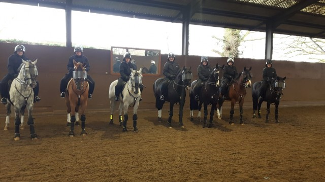 Diary of a trainee Mounted Police Officer