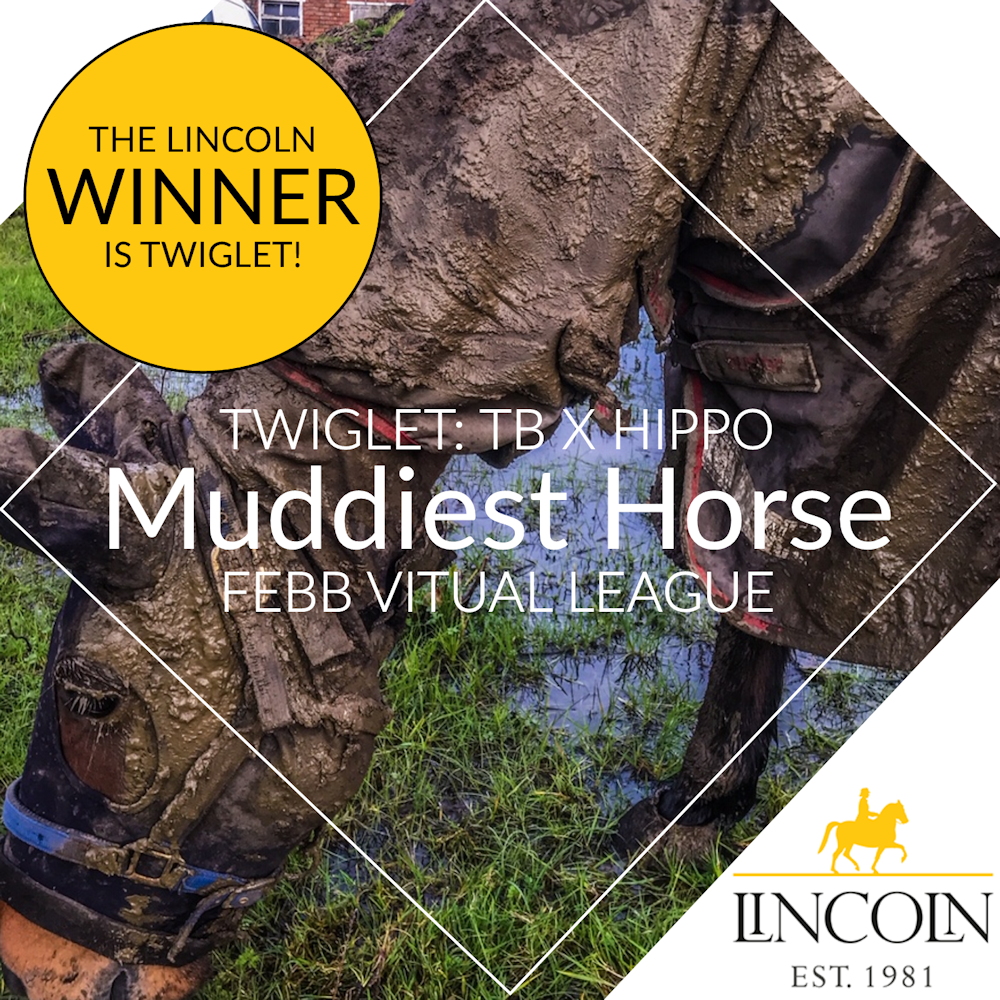 The Lincoln Horse Care Muddiest Horse Winner
