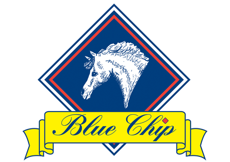 Logo-Blue Chip Feed