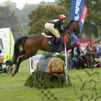 Cotswold Cup Series 70cm (SOUTH)